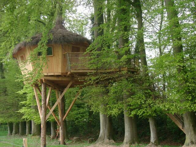 Unusual accomodation